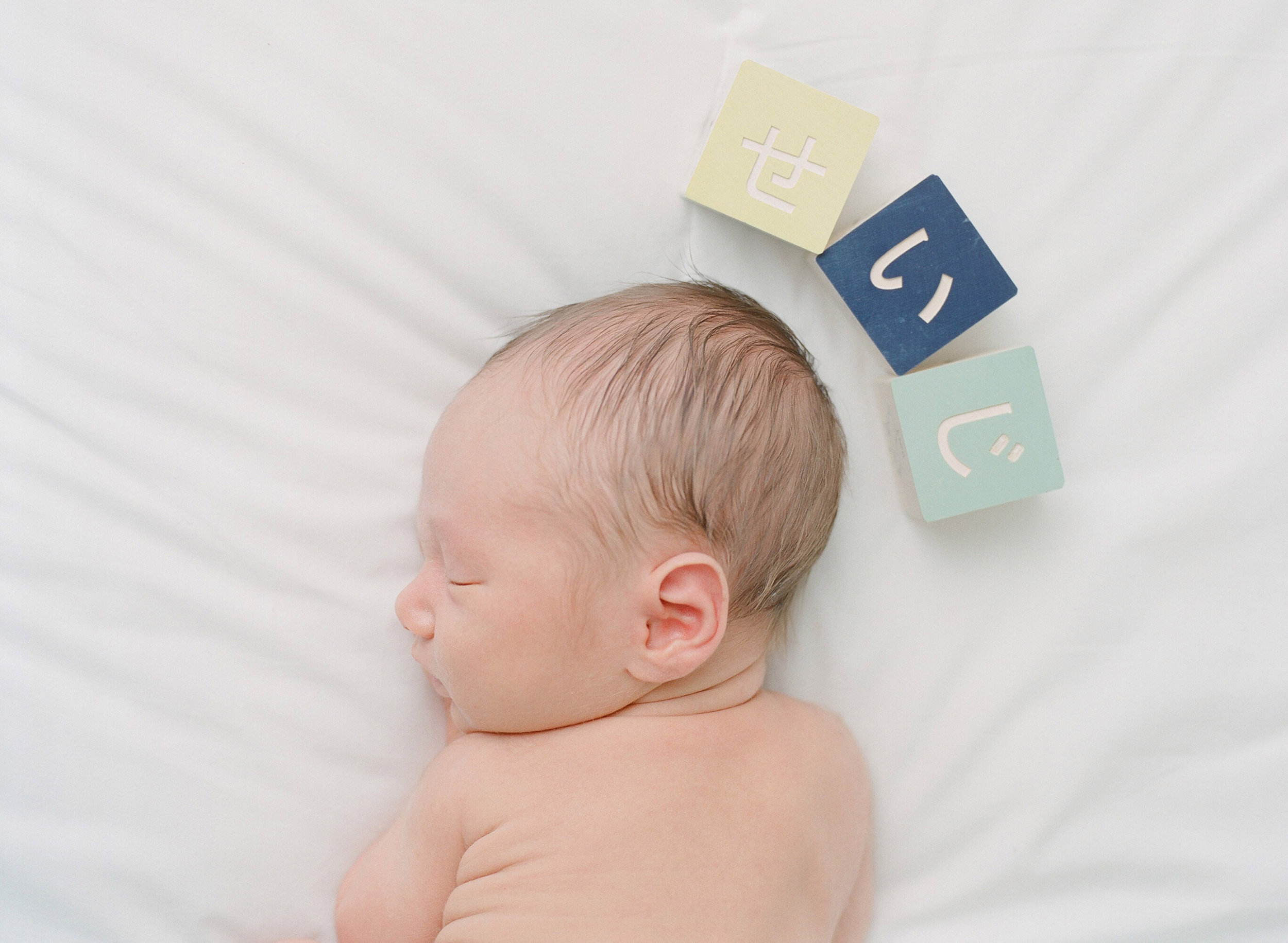 sandra coan seattle newborn baby photography japanese blocks, toys, and dolls