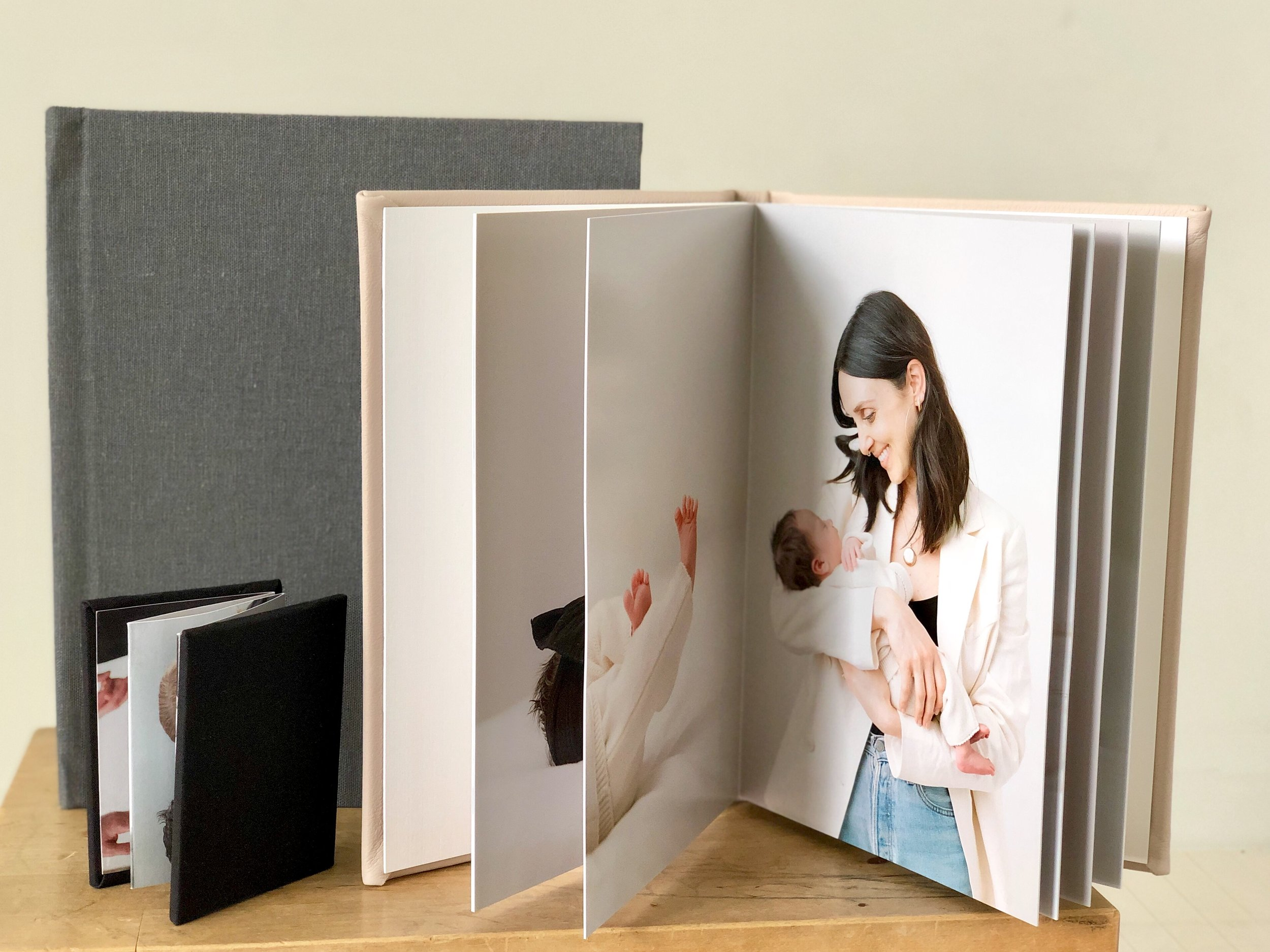 Here we have an 8x12 album with a tundra linen cover, a 6x9 album with a blush leather cover and an accordion book album.