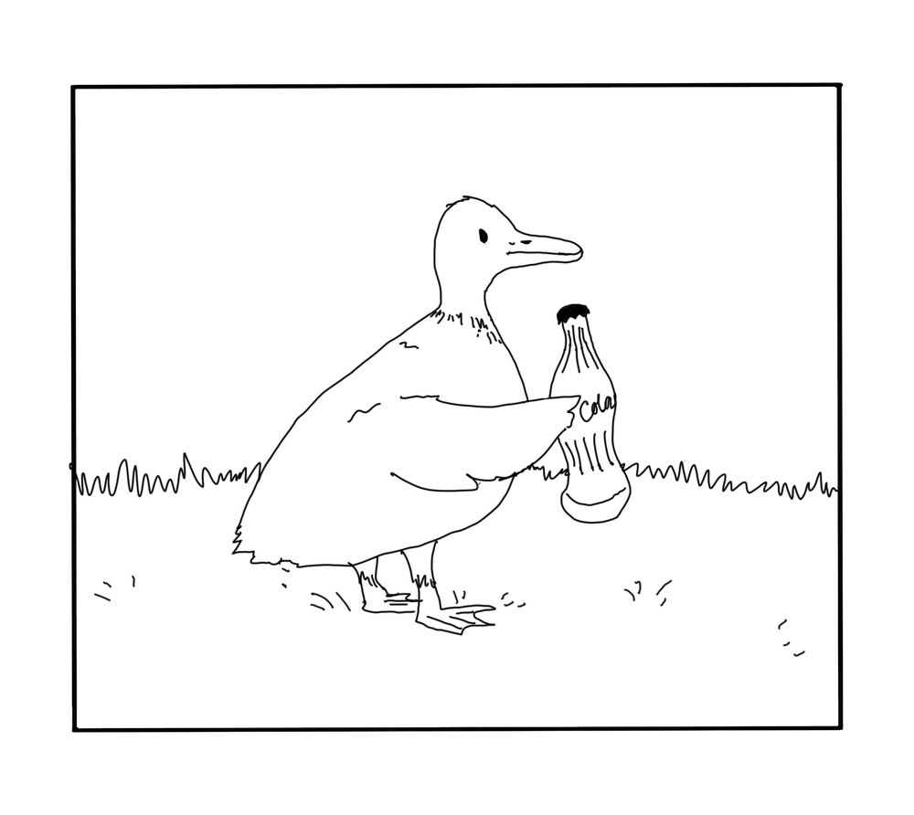 duck+1.jpg