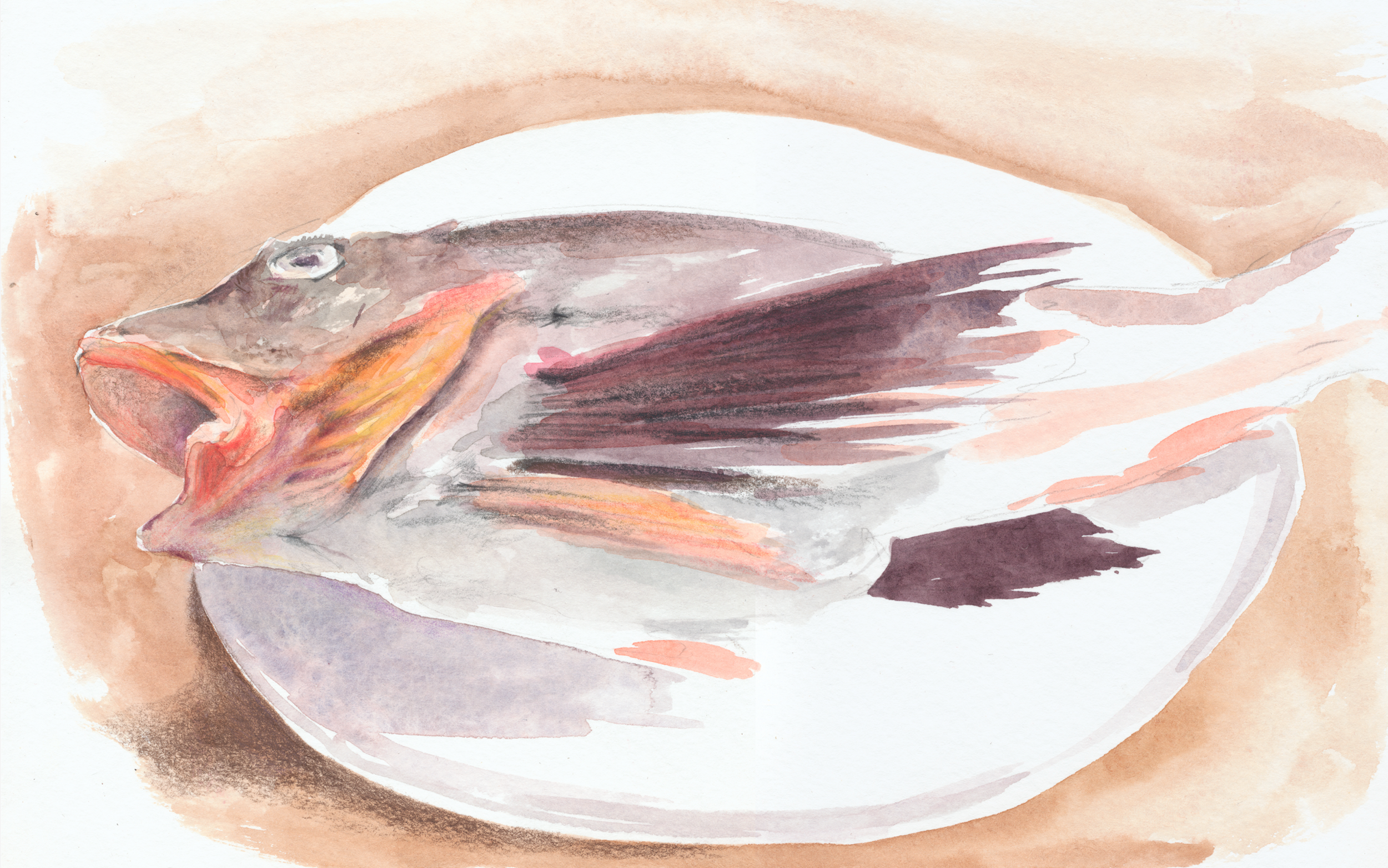fish painting.png
