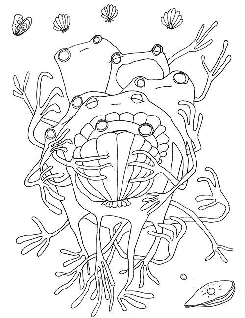 frog 4.jpg