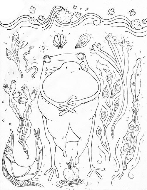frog 5.jpg