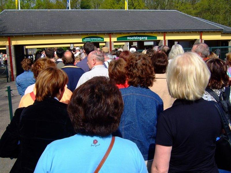 Это не очередь, это толпа уже с билетами на входе. Двигаемся гуськом. Цветы? Ну, если у вас рост 2 метра, то увидите. Источник: 10*