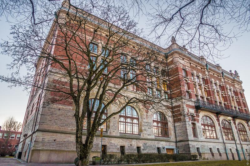 Гётеборгская школа бизнеса