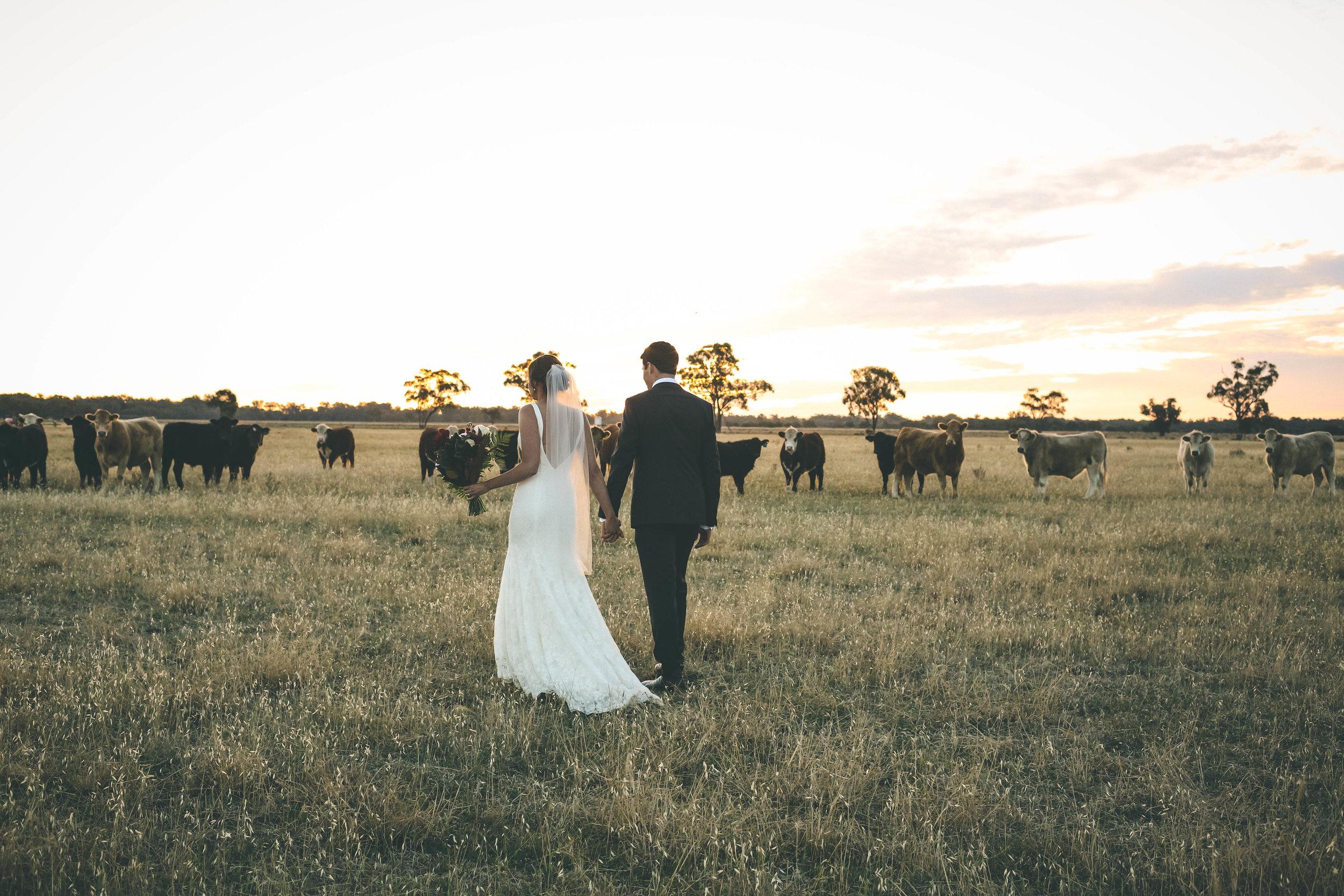 Dubbo Wedding Photography