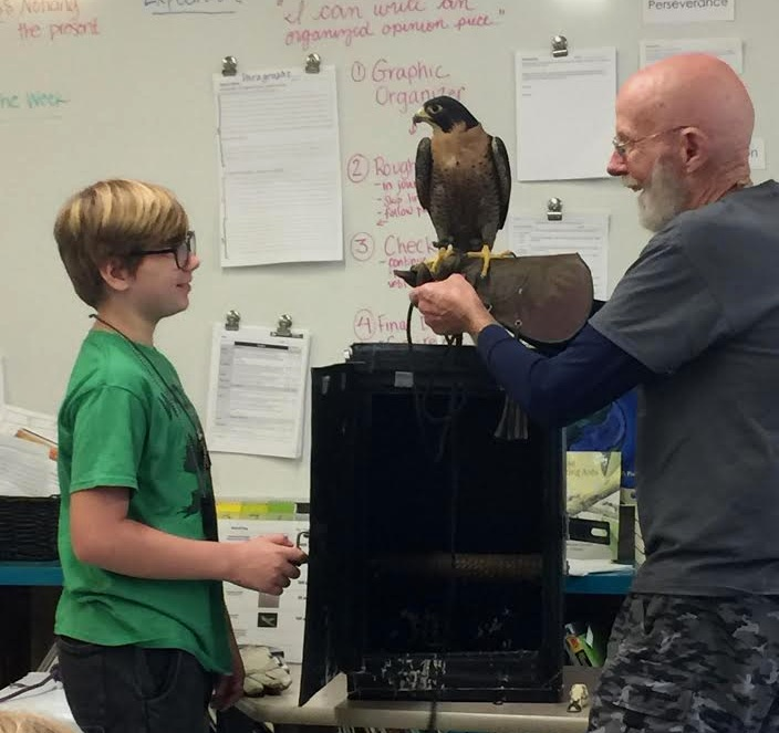 Local Raptor Rehabilitator, Steve Longenecker, visited our classroom & brought several birds of prey including a red tailed hawk, a screech owl, a barn owl, and a peregrine falcon!