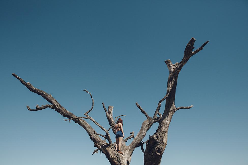 fiona_treeweb.jpg