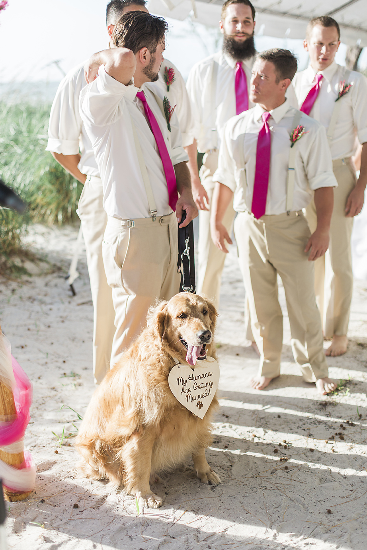 Kelsey + Grant - Preview Photos - Treasure Island Wedding Photography - Emily & Co 23.jpg