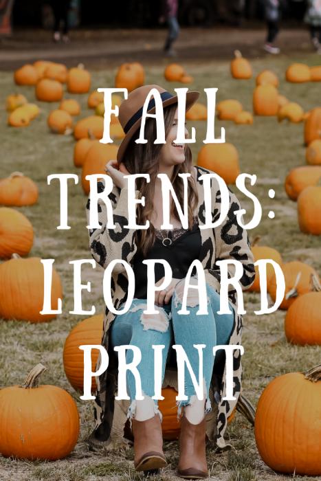 Trending: Leopard Print! Style by Julianne Fall 2018
