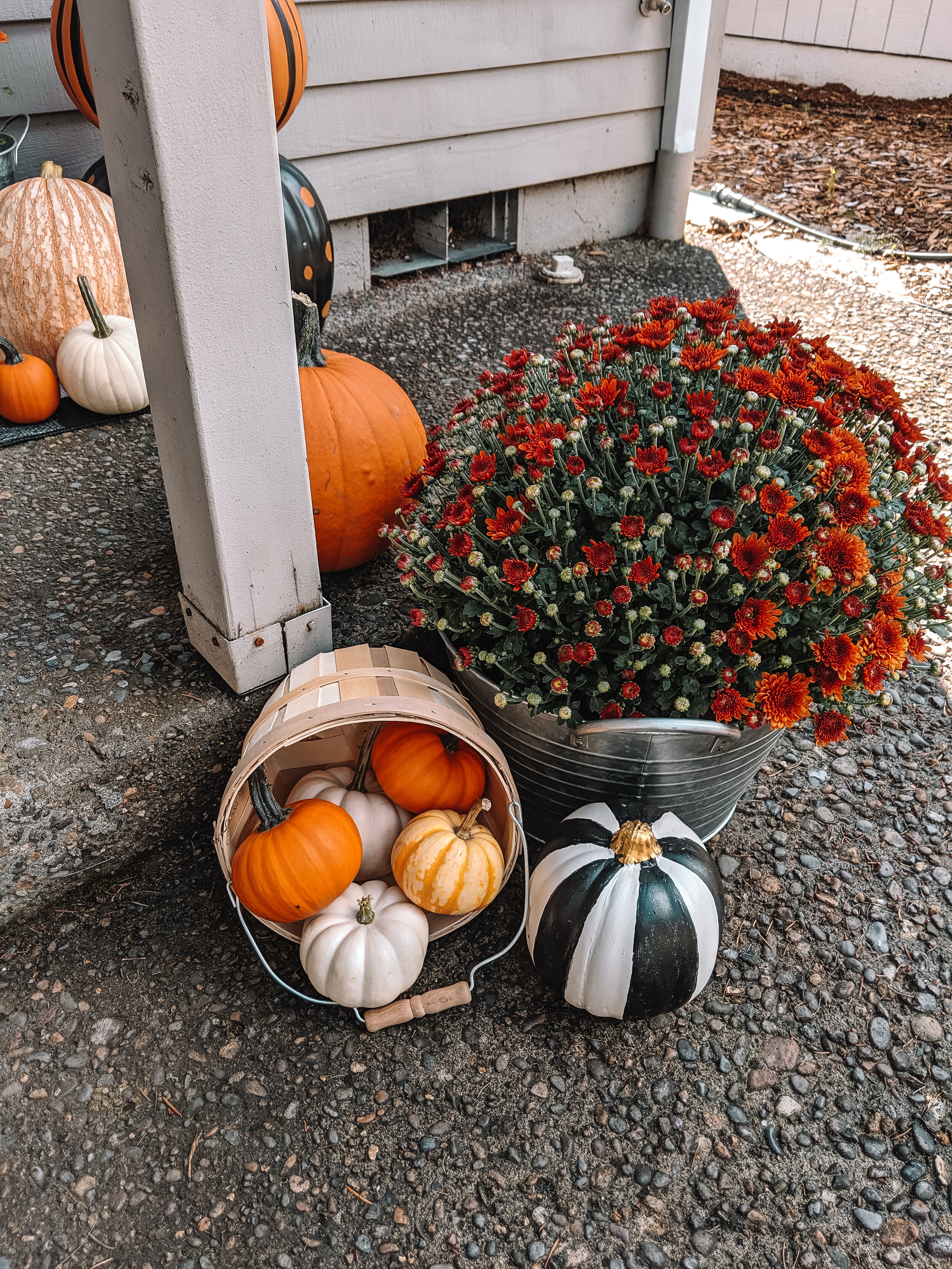Front Porch Fall Decor - Mums in a Bucket