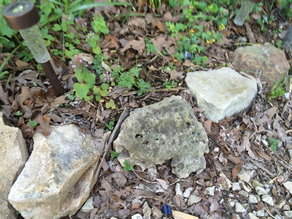 These rocks have been a flower border for a couple of years holding in soil, mulch and moisture.