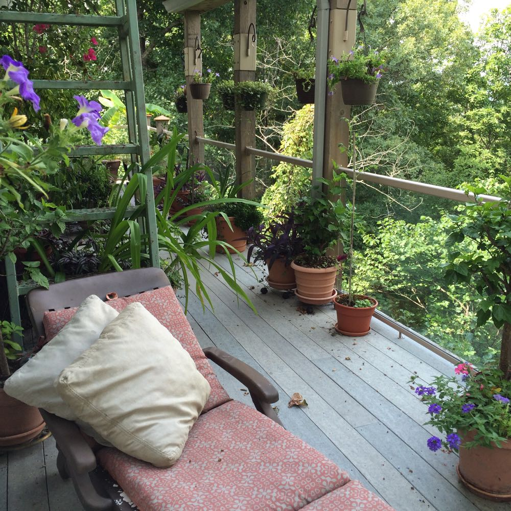 It has been too hot in Missouri to enjoy my favorite summer reading corner on my deck.