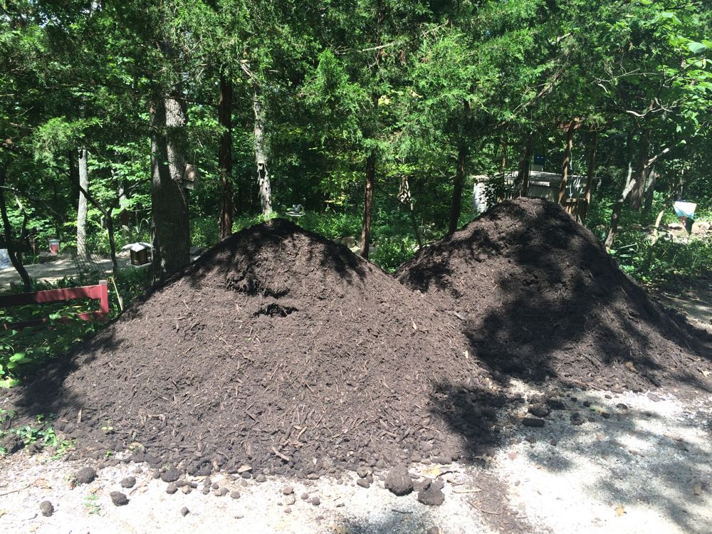 Two of my delivered truckloads of mulch from our recycling center by a good friend.