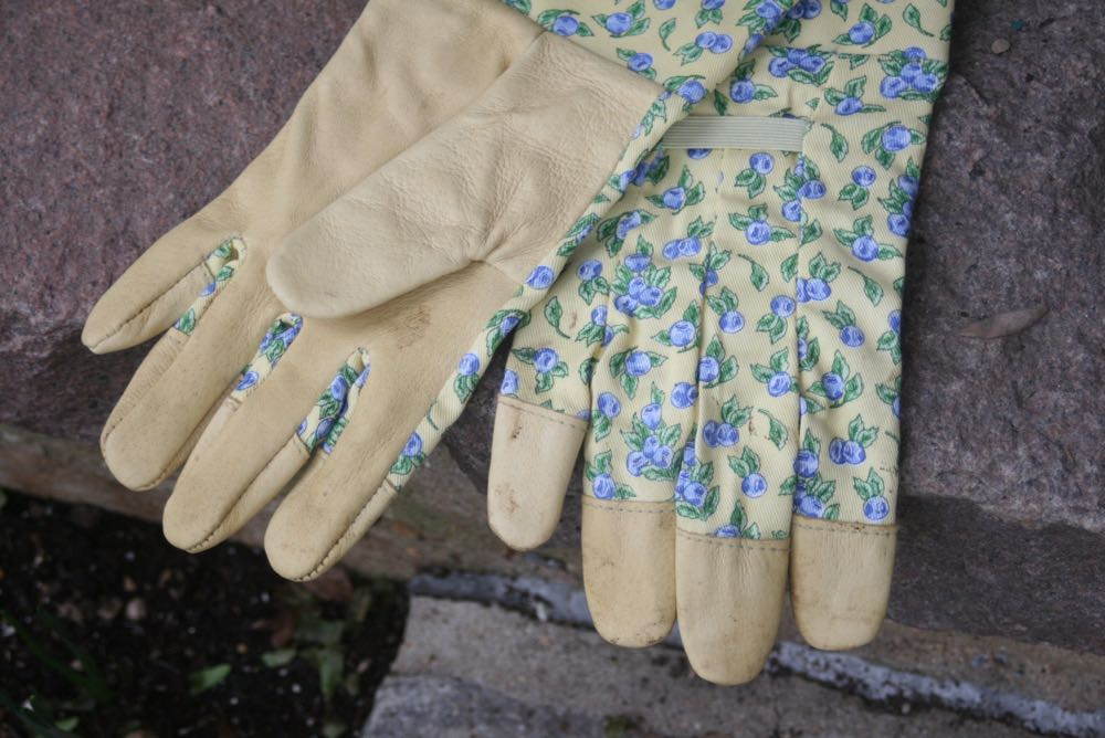 My favorite, and the gardening gloves I recommend, with re-inforced fingertips.
