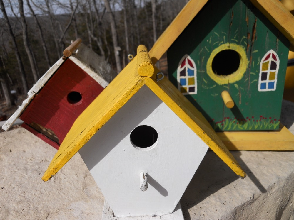 Birdhouses undergoing repairs are drying in the sun before I put them back out in the garden. Repairing birdhouses are one of the many traditional March gardening chores I look forward to getting ready for spring.