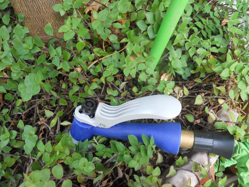 In hot weather, the best way to water your garden is with an underground wand (back) or by pressing the hose head into the ground so the water reaches plant roots.