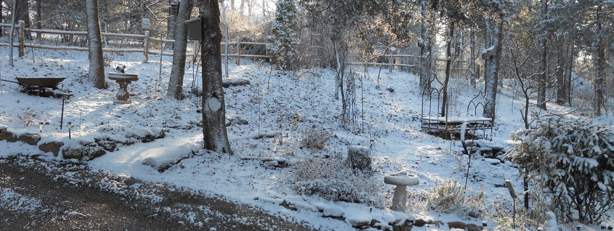 The front of my garden covered in snow. When the sun shines, the garden is magical!