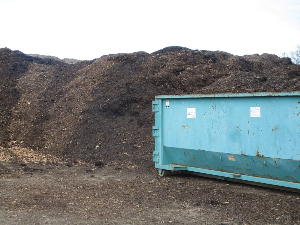 Chipped trees and donated branches become a gardener's dream, a pile of potential mulch!