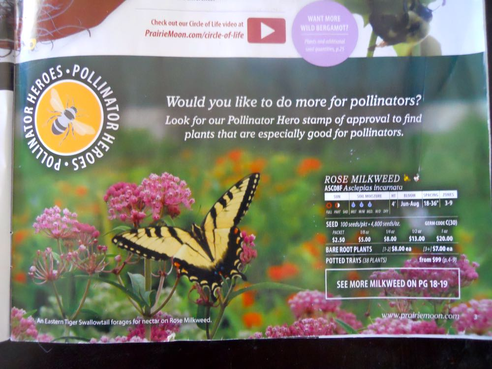 Prairie Moon Nursery's catalog has plants and seeds easily identified as pollinator plants.