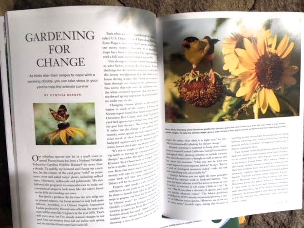 Here's my photo in the National Wildlife Federation article about gardening for change.
