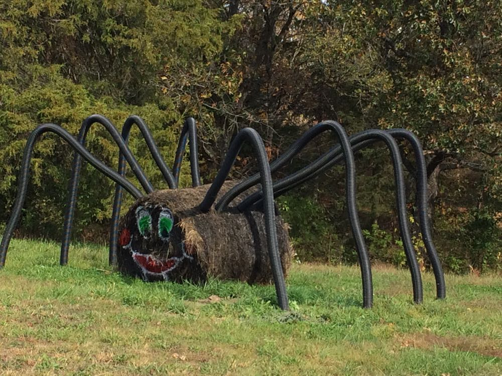 This hay spider is ready to welcome Halloween. (Photo by Charlotte Ekker Wiggins)