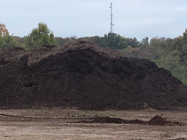 Newly-chipped mulched at our local recycling center. (Photo by Charlotte Ekker Wiggins)