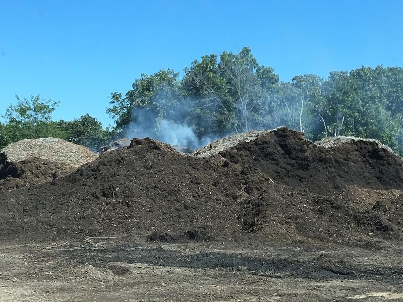 New mulch pile literally smoking. (Photo by Charlotte Ekker Wiggins)