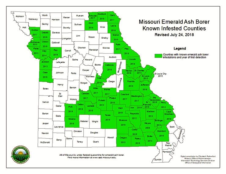 Confirmed emerald ash borers since July 24, 2018.