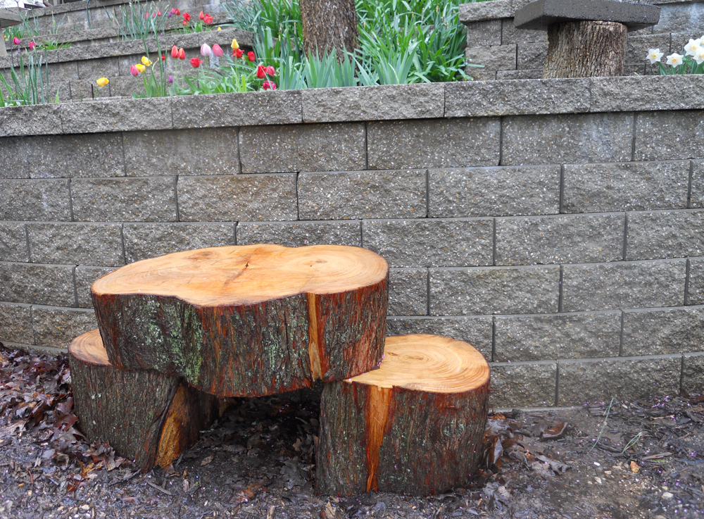 Using the smaller tree stumps for side tables at the bench. (Photo by Charlotte Ekker Wiggins)