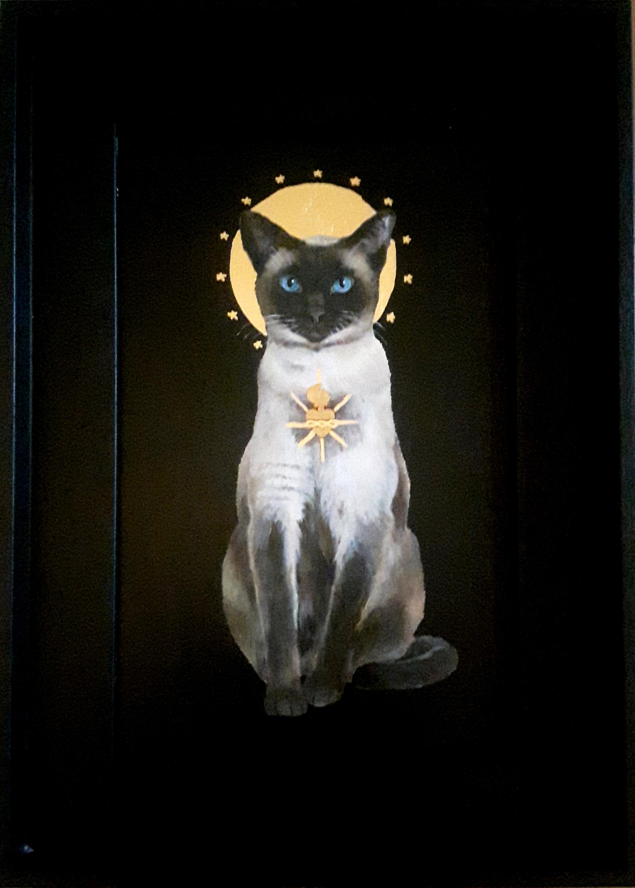 Sacred Cat - Siamese