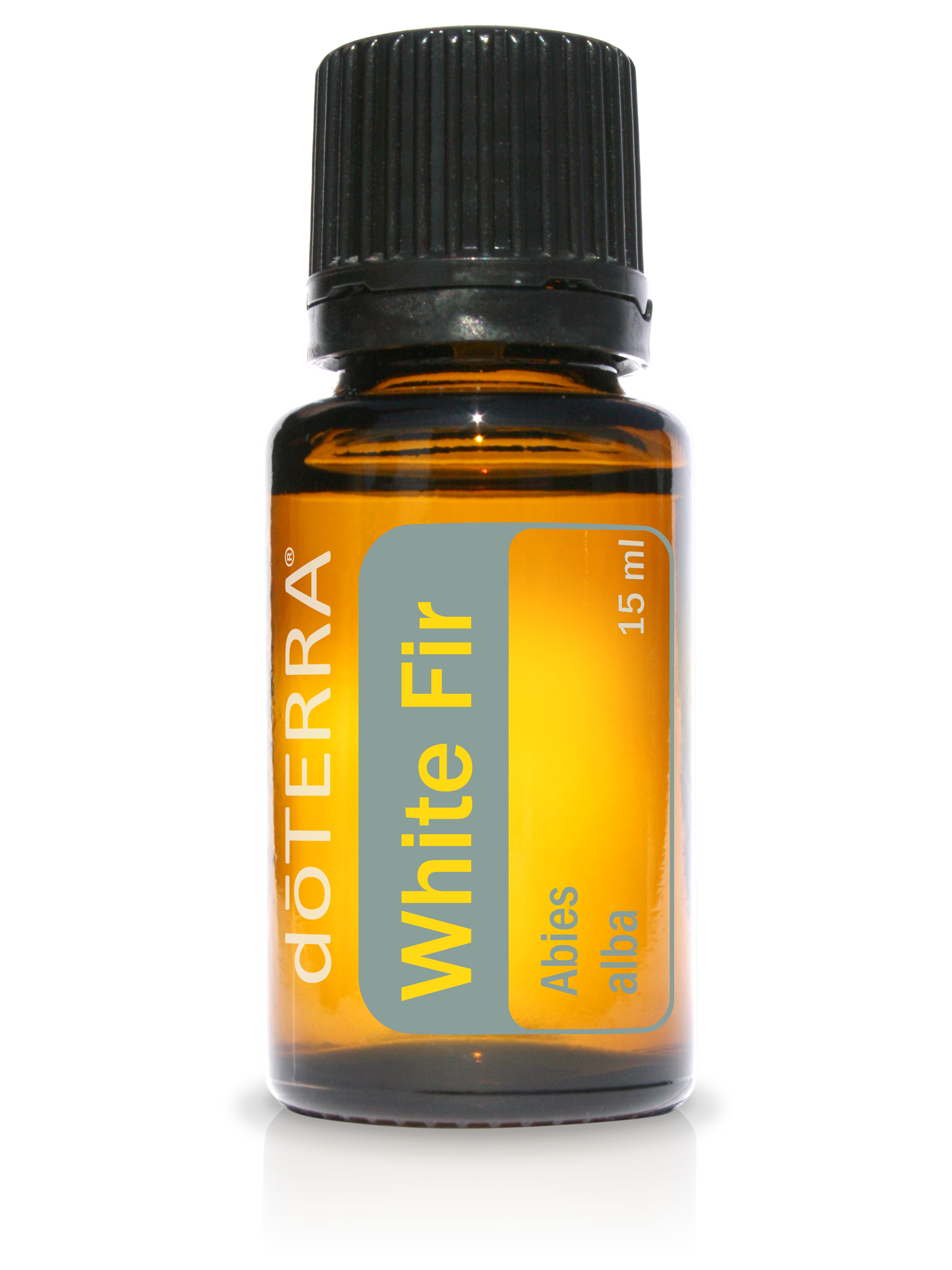 White Fir Essential Oil
