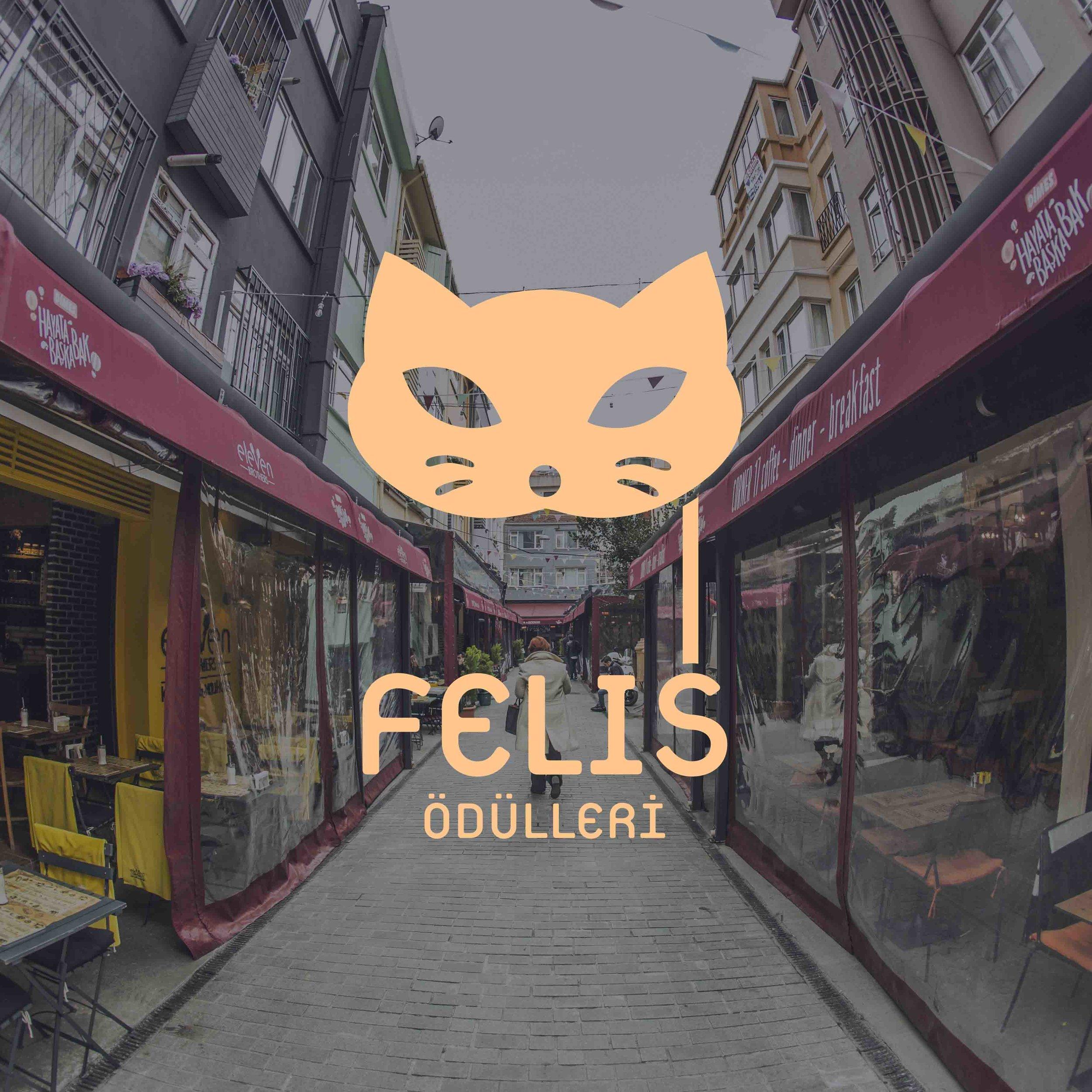 felis_01.jpg