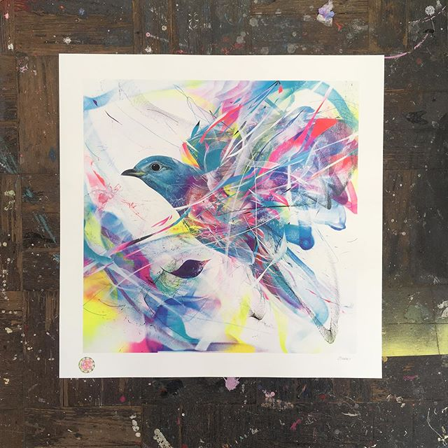One of the @upfest summer edition prints from a few weeks back. Titled 'Suriname' by artist @l7matrix  Six colour screen print including U.V protective spot gloss so those fluro's stand the test of time. 600 x 600 on Somerset satin 100% cotton archival stock.  #screenprint #print #upfestsummereditions #fluorescent #fluroprint #cmyk #hummingbird  #fineartprint #finearteditions #limitededitionprint