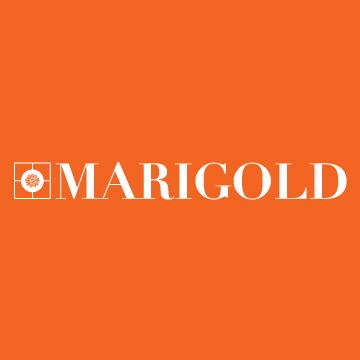 Marigold1.jpg