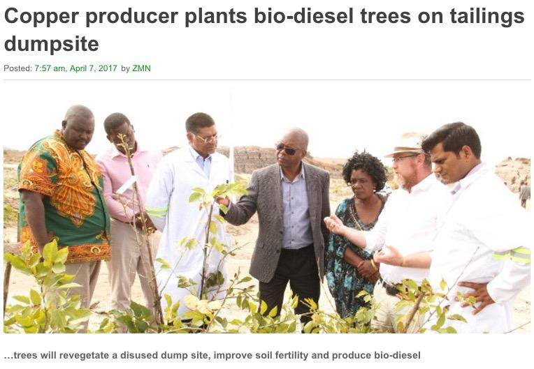 Matthew Nkhuwa, Minister of Works and Supply inspects saplings
