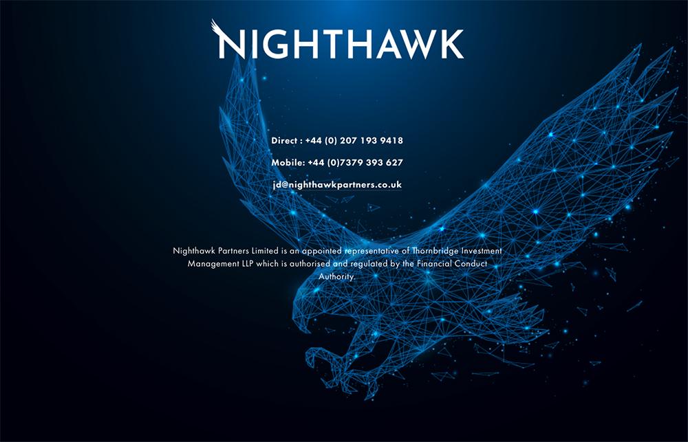 Nighthawk1.jpg