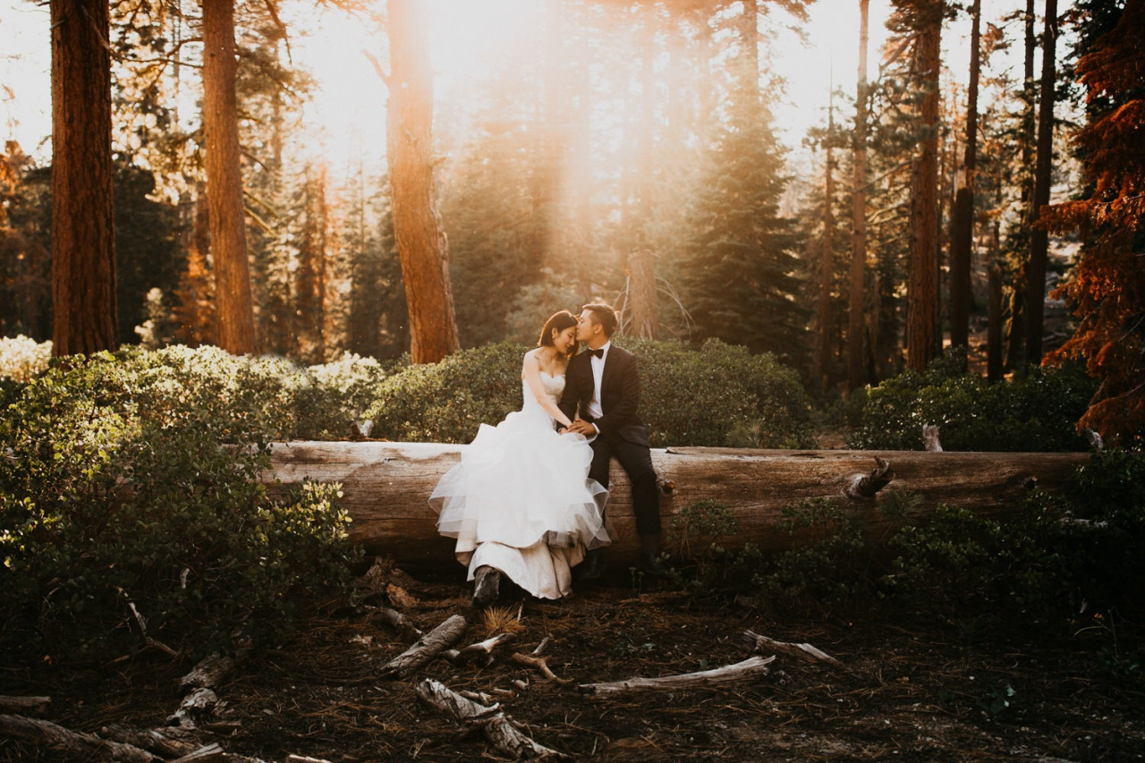 Photographed in Yosemite National Park, United States by Cody & Allison Photography