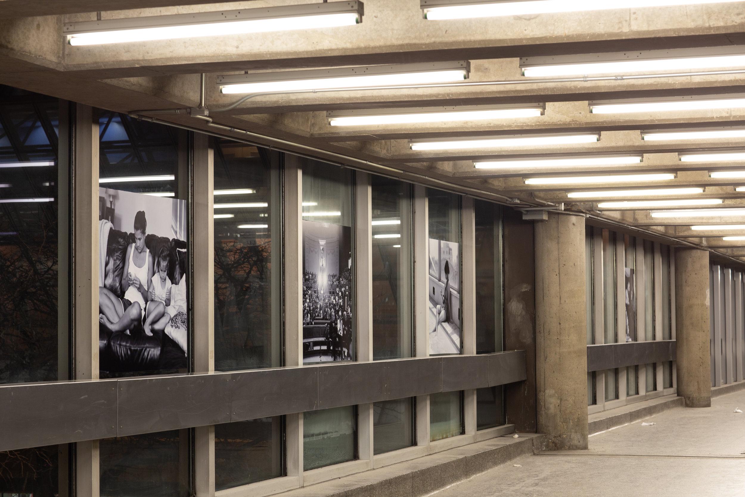 101-Nuit-Blanche-2019-Eric-Pickersgill-photo-Mike-Patten.jpg