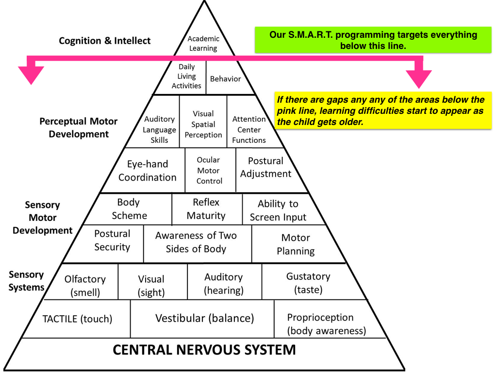Williams Shellenberger Learning Pyramid