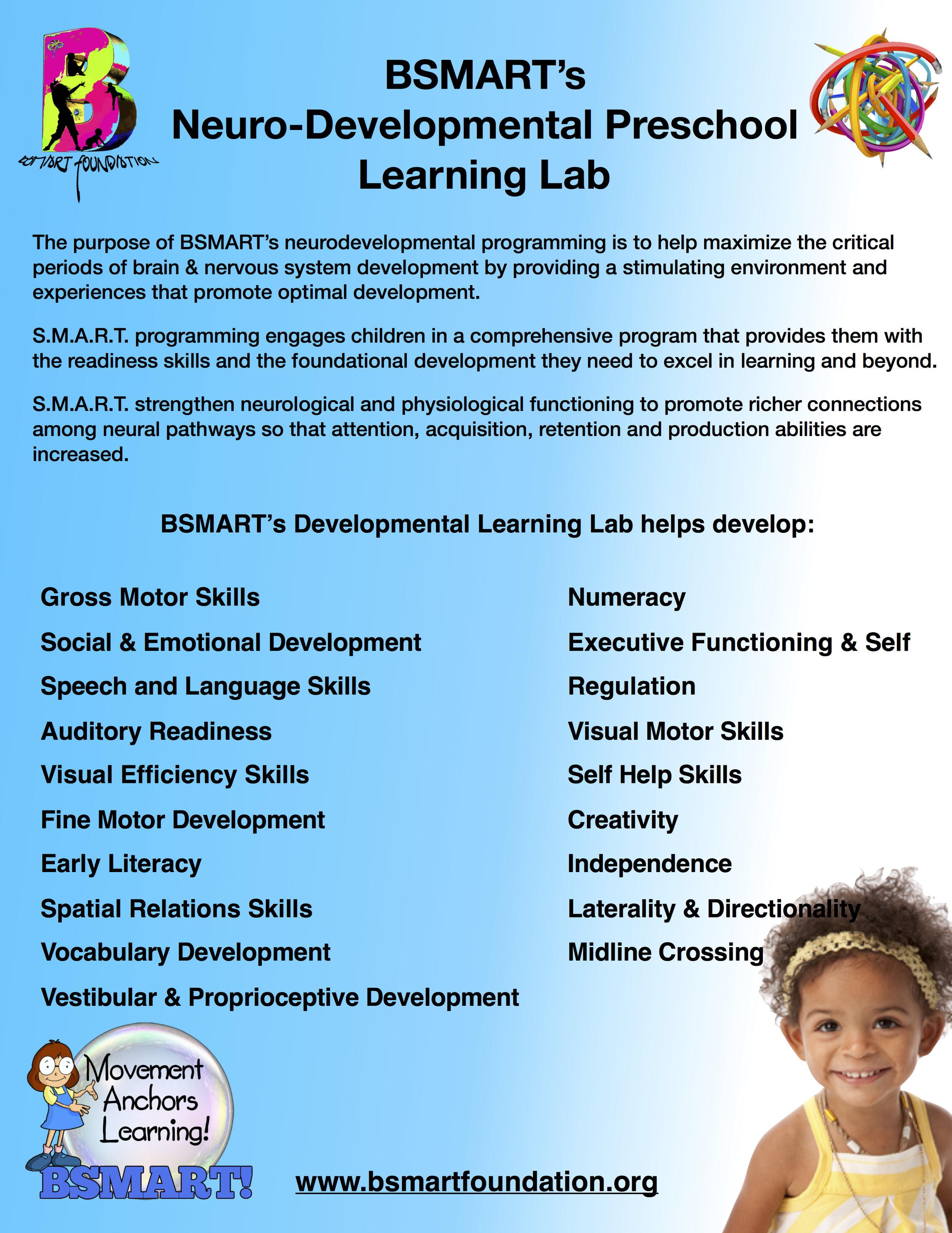 BSMART Preschool NeuroDevelopmental Domains_Learning Lab.jpg