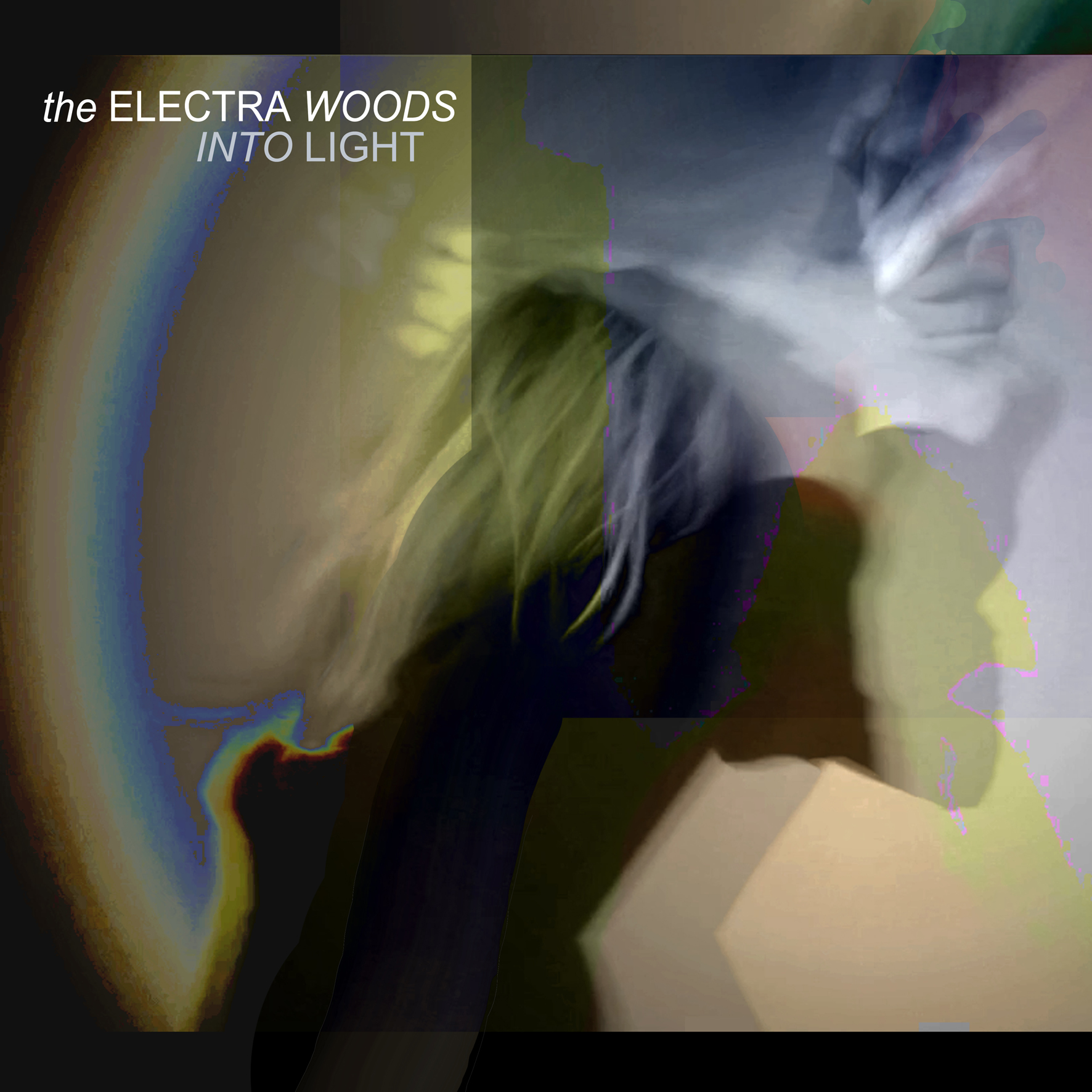 INTO LIGHT The Electra Woods SML.jpg