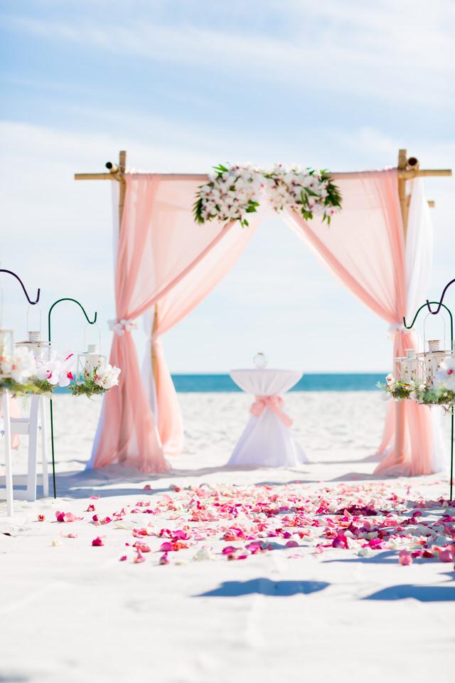 Set up beach weddings
