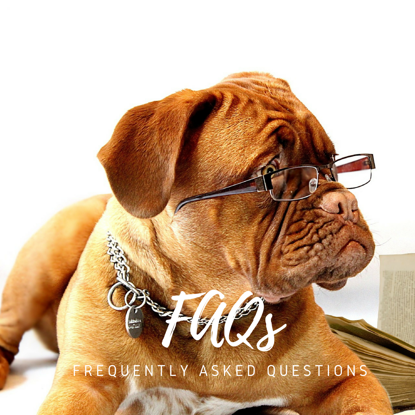 Have a question? Check out our FAQ pages!