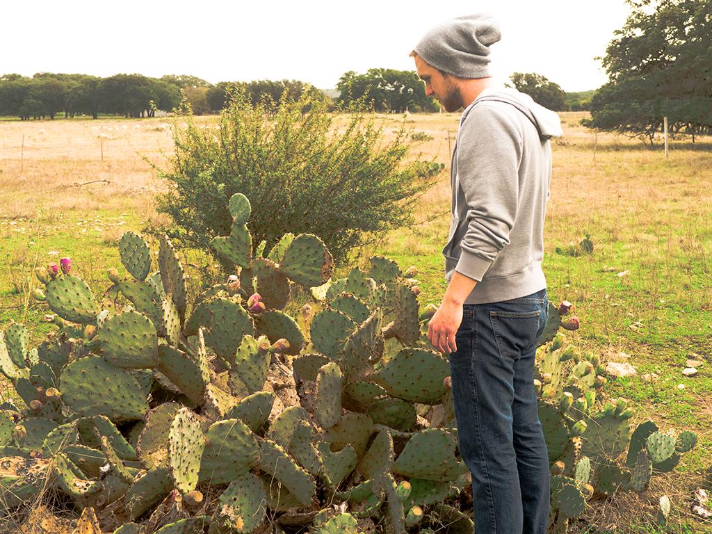 CactusStandresized.jpg
