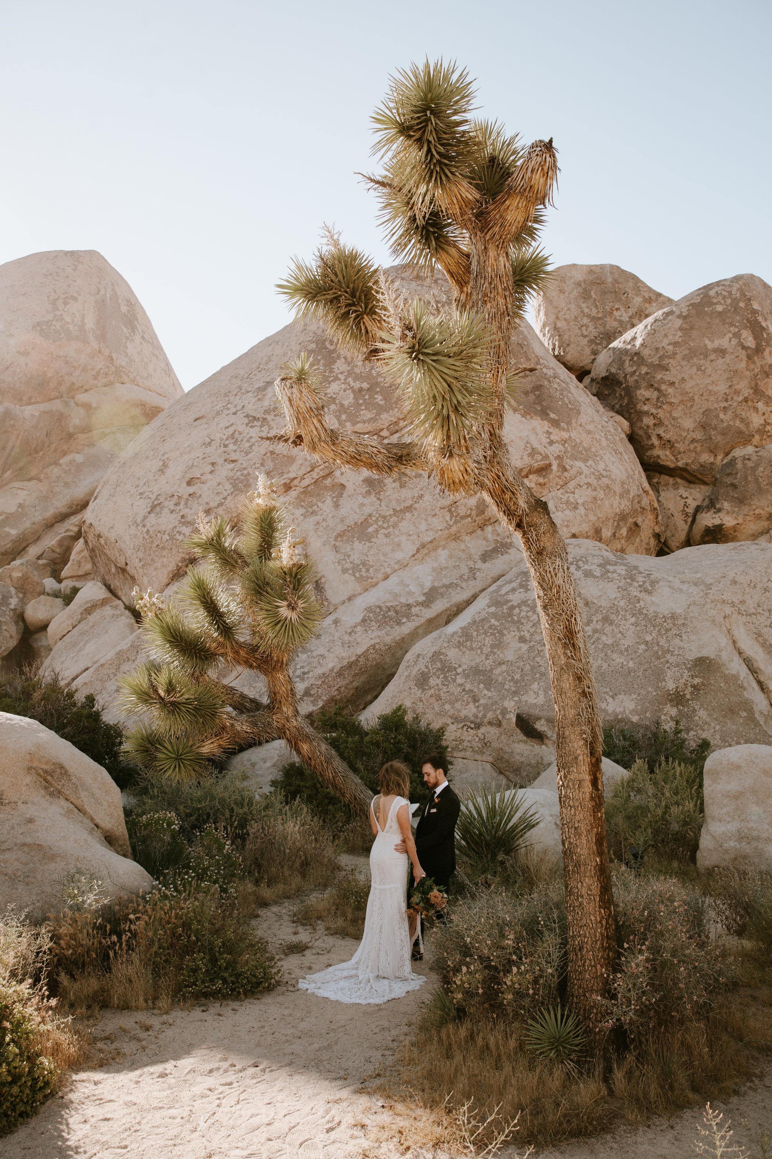 2019-05-26_Callie-Evan_Wedding_Joshua Tree_Paige Nelson_PREVIEWS HR-31.jpg