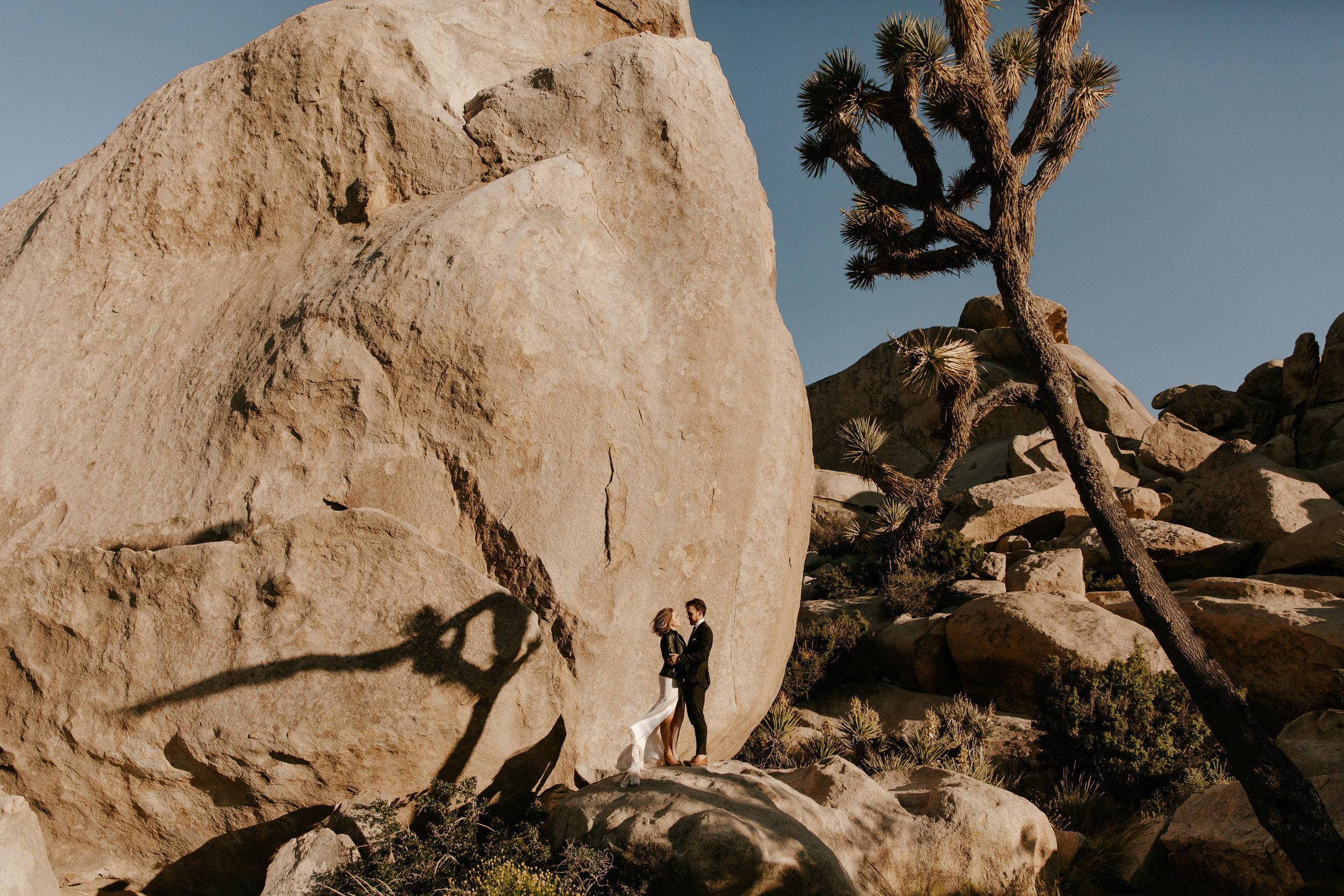 2019-05-26_Callie-Evan_Wedding_Joshua Tree_Paige Nelson_PREVIEWS HR-51.jpg