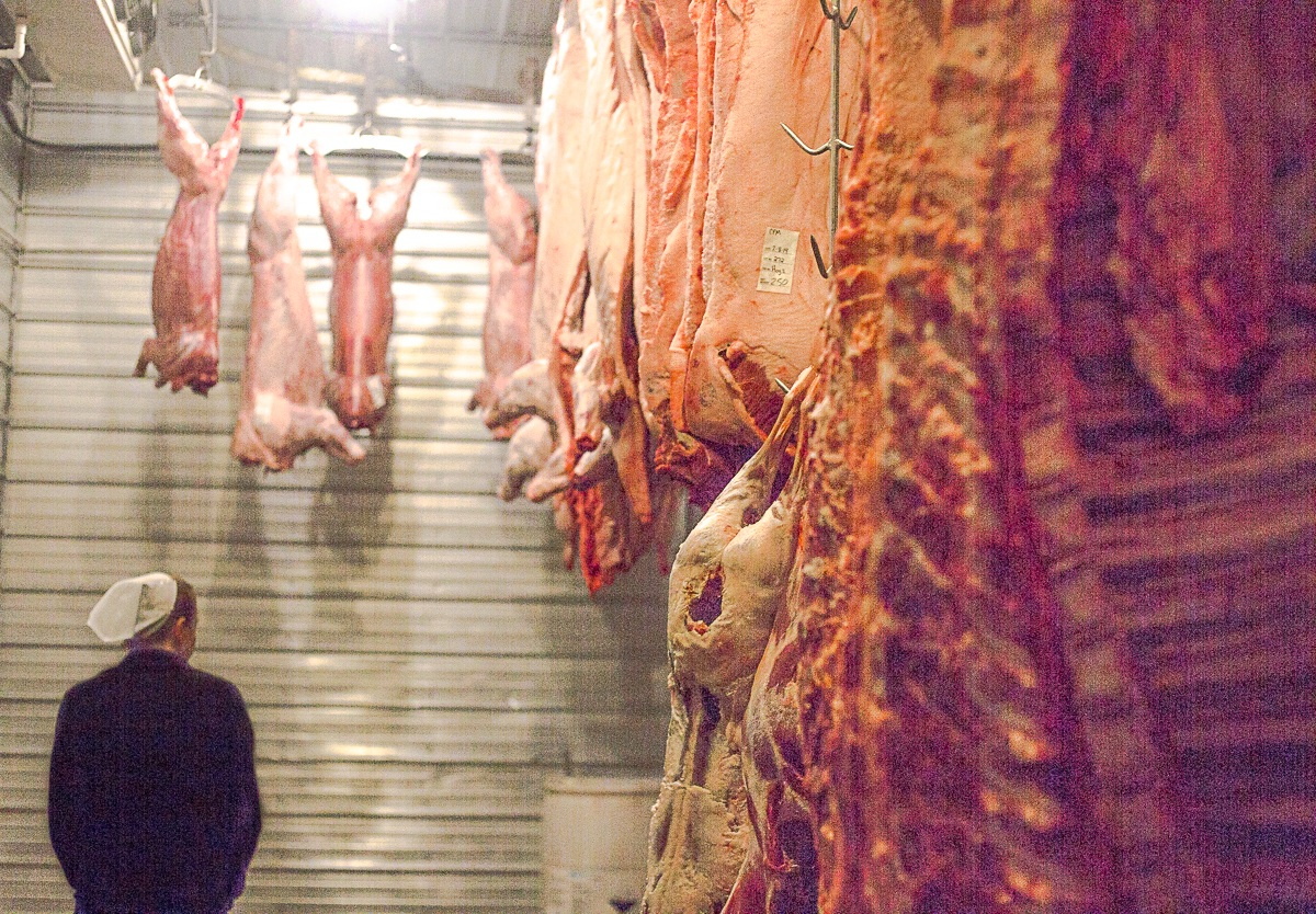A devote Amish believer, Amanda Miller, is one of the main operators at Westcliff Meats in Colorado, a processing facility which only slaughters 10 animals at a time.