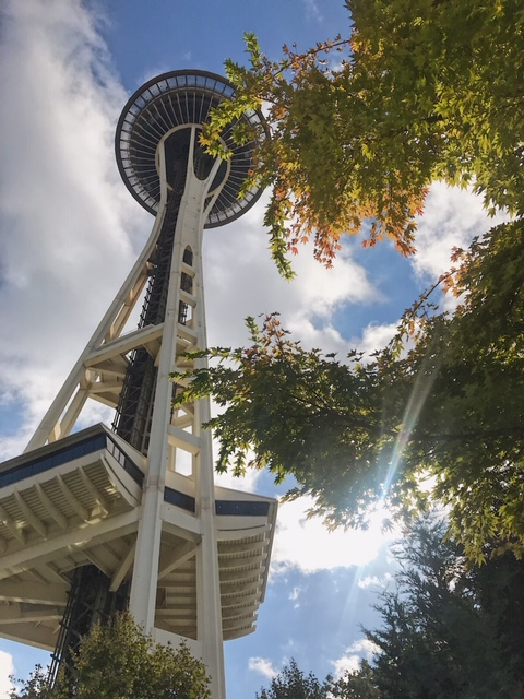 """You have to see the Space Needle in Seattle or what's the """"point"""" of your trip?"""