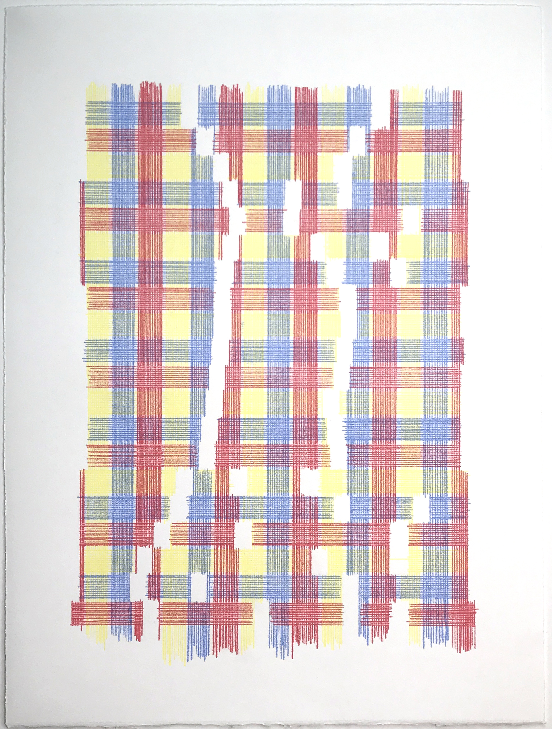 What Nature Might Be Doing (Plaid), 2018 Transfer Pigment on Paper; 15 x 20 inches