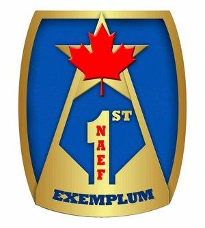 1stNAEF-logo.jpeg